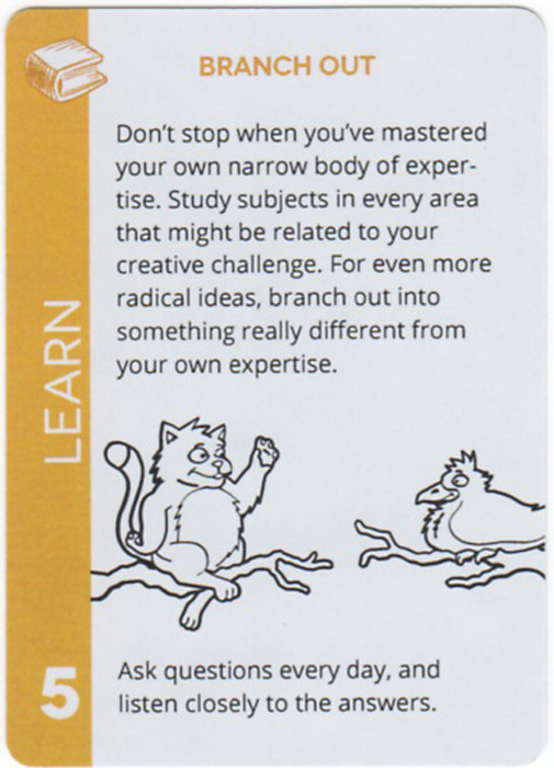 Branch Out. Don't stop when you've mastered your own narrow body of expertise. Study subjects in every area that might be related to your creative challenge. For even more radical ideas, branch out into something really different from your own expertise. Ask questions every day, and listen closely to the answers.